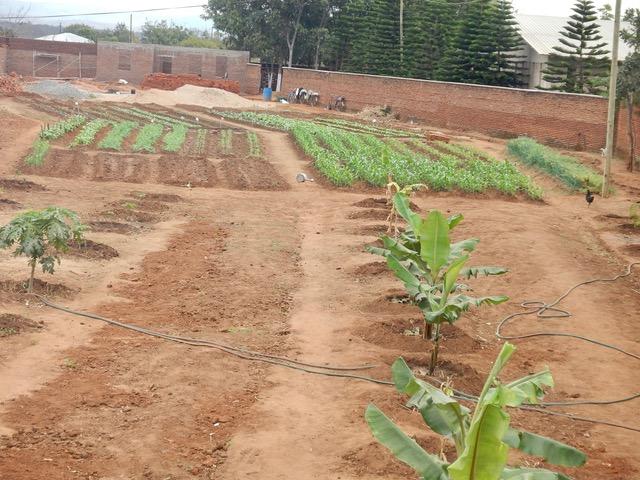 scuola di agricoltura del Cecilia Youth Center